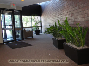 office carpet cleaning minneapolis