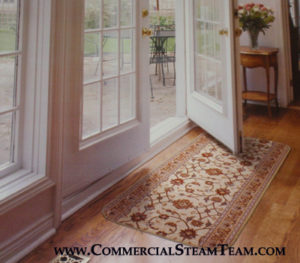 carpet runner cleaning burnsville