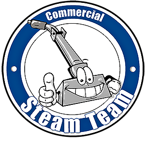 Commercial Steam Team Carpet Cleaners